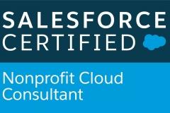 Nonprofit-Cloud-Consultant_CMYK